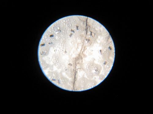 30倍顕微鏡による外壁塗装の拡大