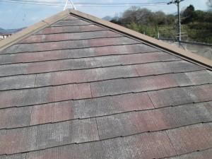 屋根塗り替え前