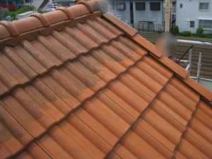 屋根洗浄比較(屋根上方の黒い部分は洗浄前)