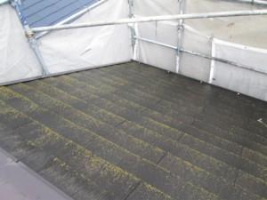 屋根(カラーベスト)塗装前