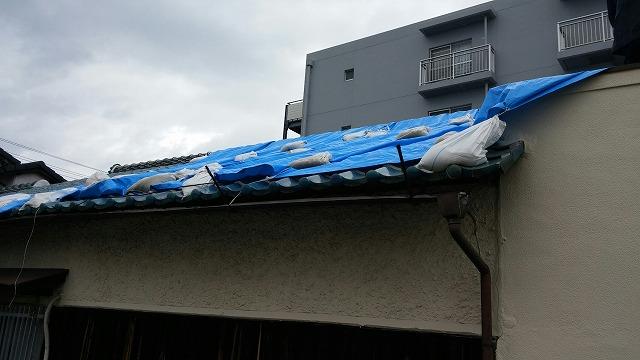 屋根現場調査