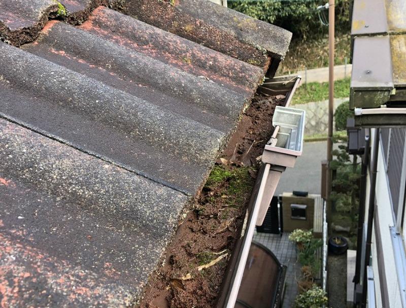 雨樋の土やコケ