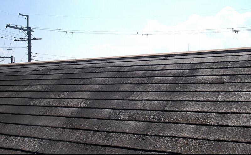 コケが発生している屋根