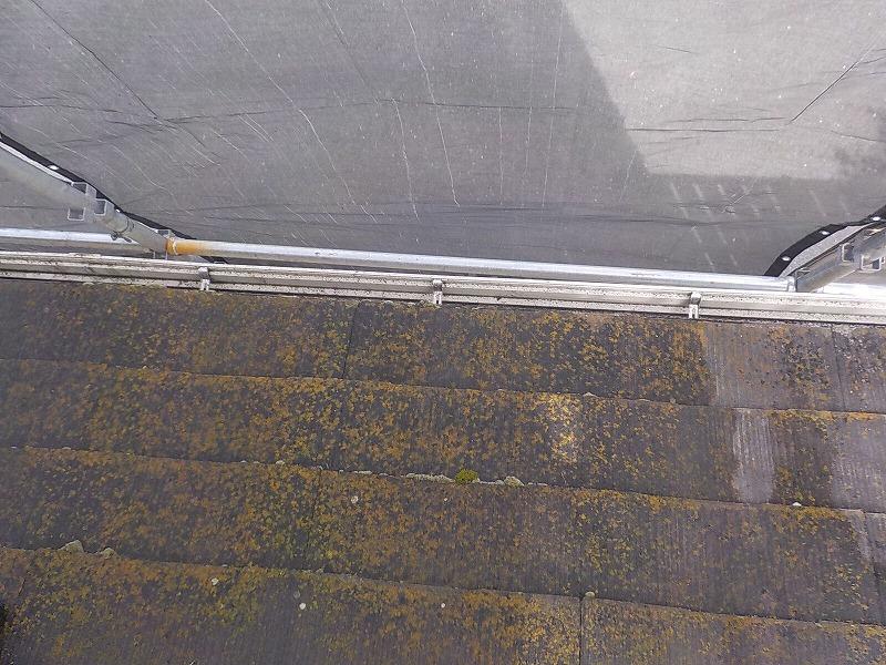 屋根にコケがある場所を高圧洗浄