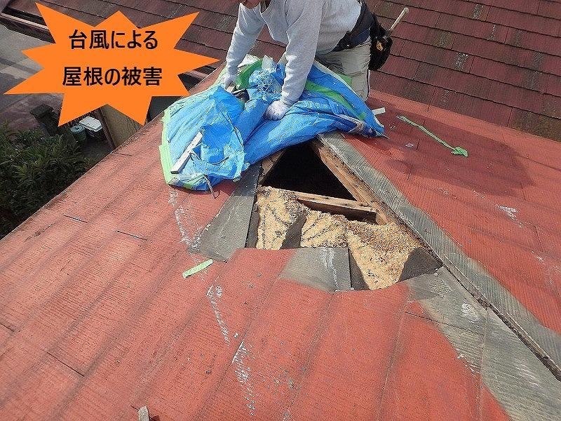 台風による屋根の被害