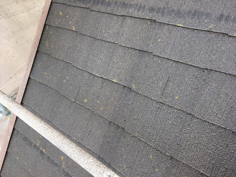 苔が目立つ屋根の高圧洗浄前