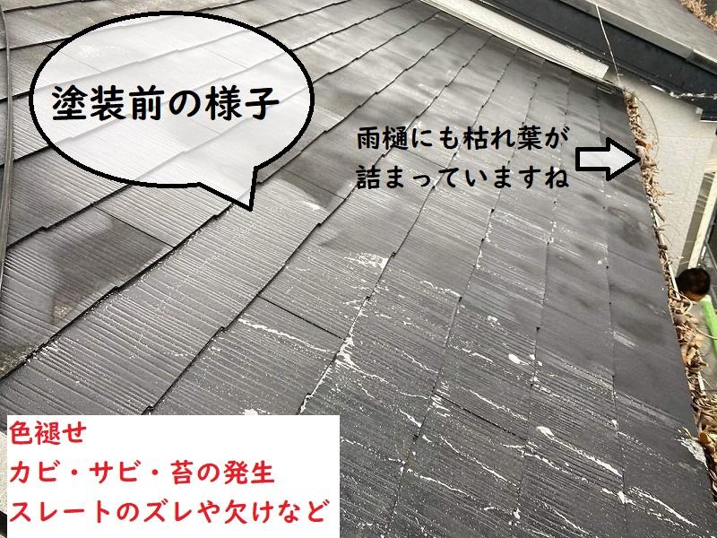 屋根塗装前の劣化症状