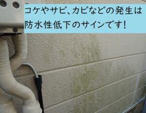 マンション外壁塗装の目安 カビサビコケの発生
