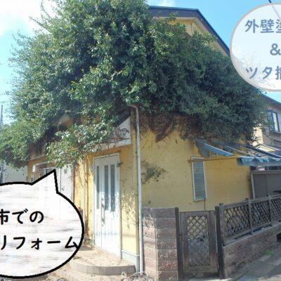 八尾市 外壁リフォーム 外壁塗装ツタ撤去