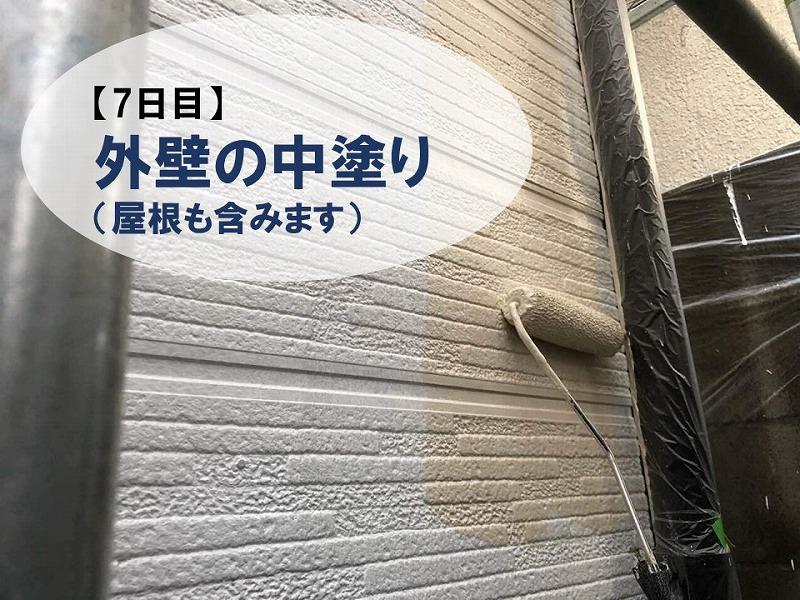 【壁塗り替え7日目】壁の中塗り