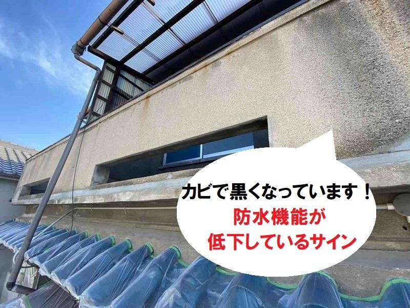外壁塗装にカビが 防水機能低下のサインです
