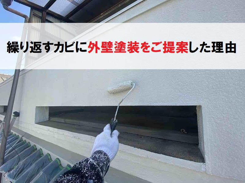 繰り返すカビに外壁塗装をご提案