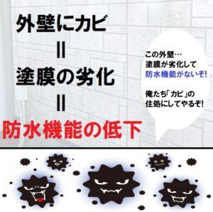 外壁にカビは防水機能低下のサイン