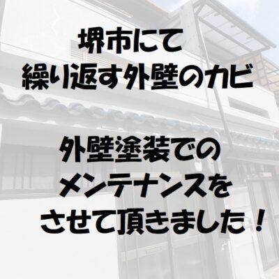 堺市外壁のカビ 外壁塗装でのメンテナンス