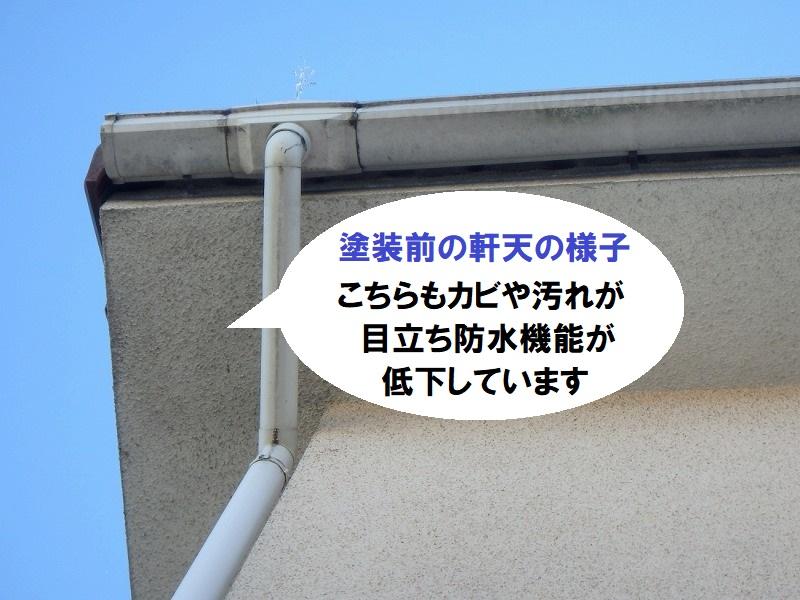 堺市の軒天塗装前の劣化の様子