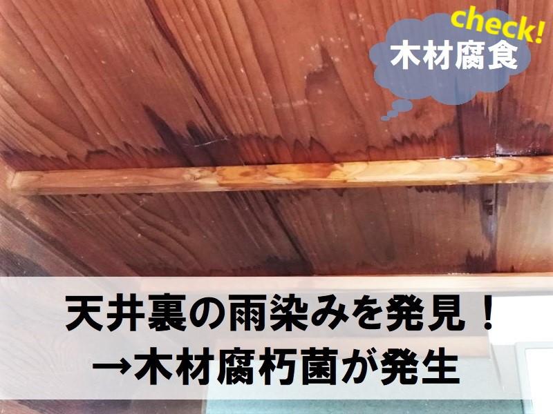 雨漏りを放置するデメリット 木材の腐食