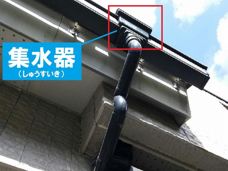 家の部位名称 雨樋の集水器